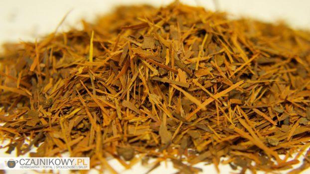 Herbata Lapacho
