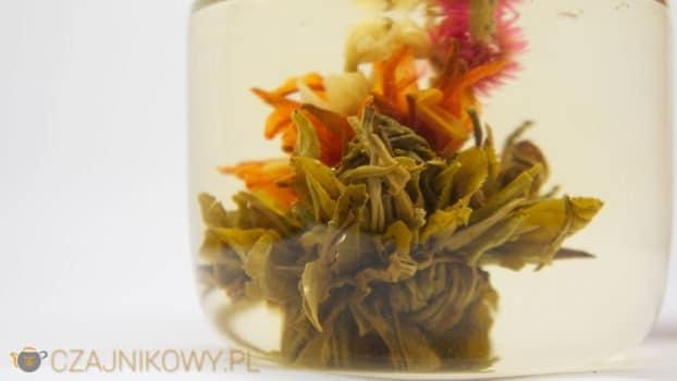 Bai He Xian Zi: Herbata Artystyczna, Kwitnąca, Rozwijająca się
