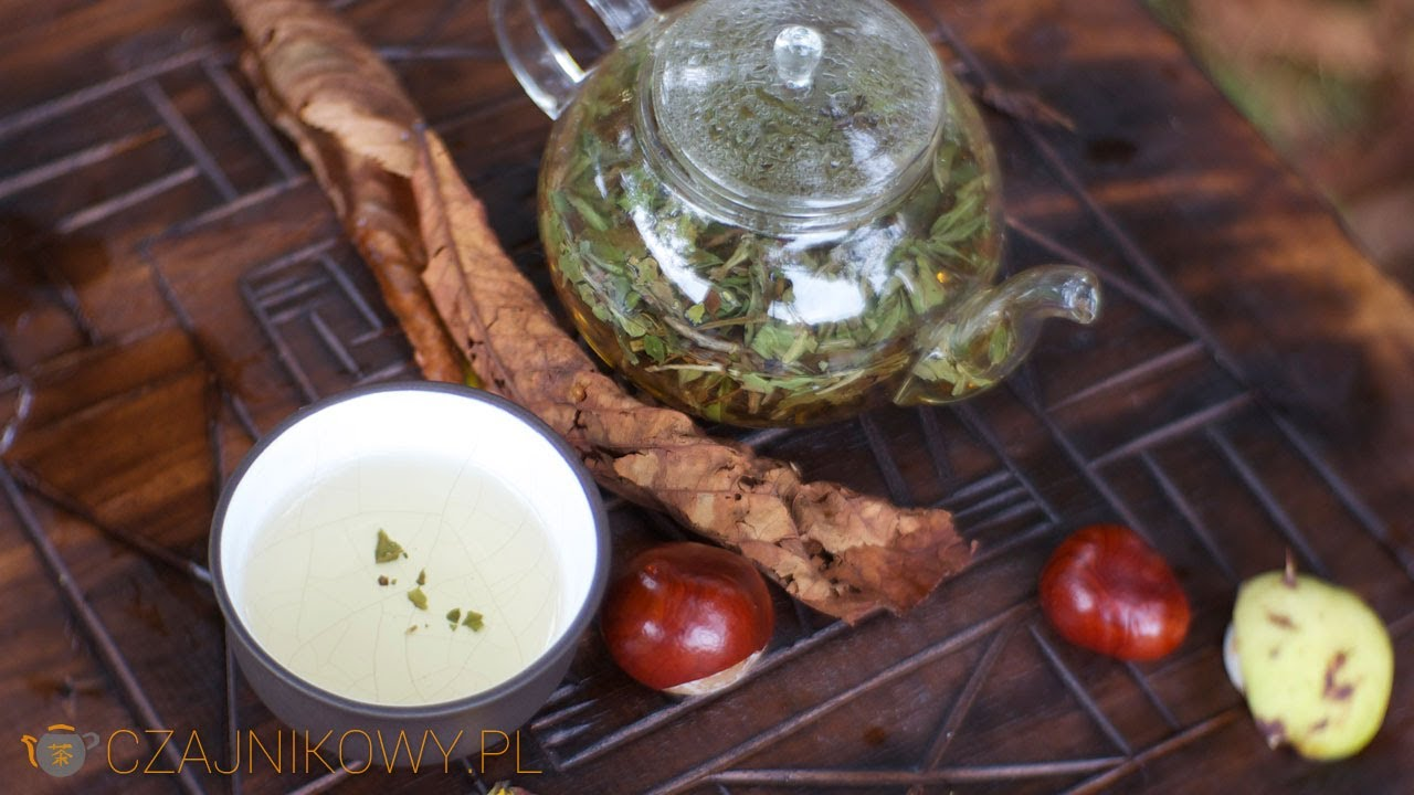 Pai Mu Tan. Klasyczna biała herbata