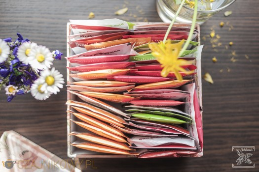 Herbata owocowa na wiosnę
