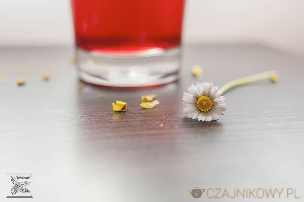 Herbatka owocowa na wiosnę