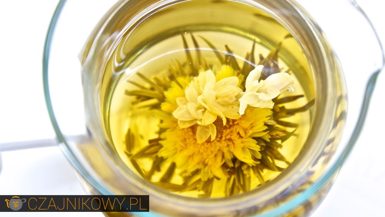 Herbata artystyczna rozwijająca się, kwitnąca, jak parzyć, porady