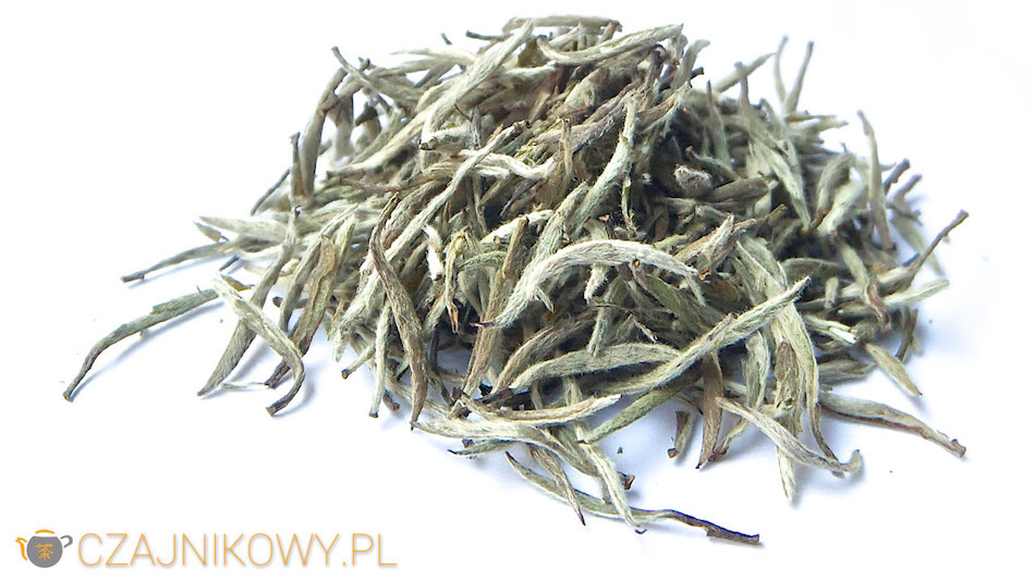 Herbata biała Yin Zhen
