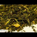 Herbata kaktusowa, czyli herbata z opuncją