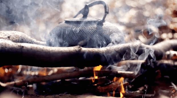Najlepsza herbata na przeziębienie, herbata Aragorna Władca Pierścieni
