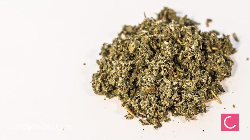 Herbata ziołowa Malina Właściwa