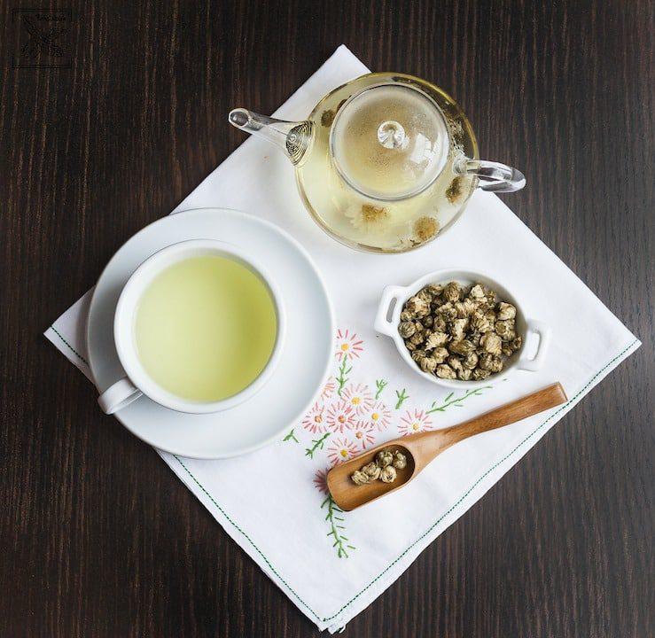 Zaparzona herbatka ze złocienia