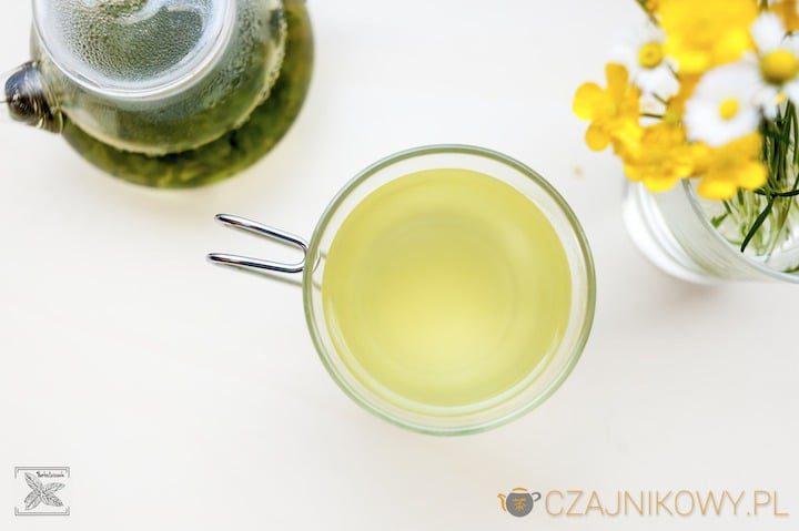 Herbata zielona koreańska Hyunmicha-Garucha, porównanie z ekspresówkami koreańskimi