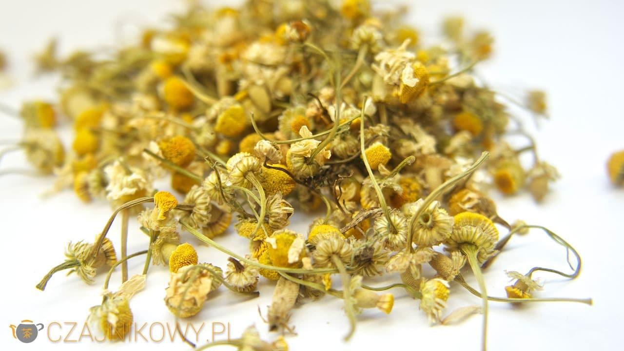 Herbata ziołowa Rumianek