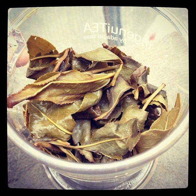 Liście herbaty, herbata liściasta