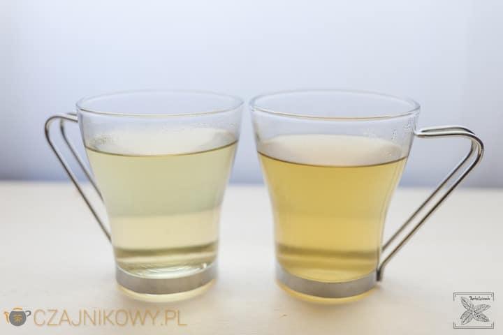 Porównanie herbaty koreańskiej Hyunmicha-Garucha i ekspresowej