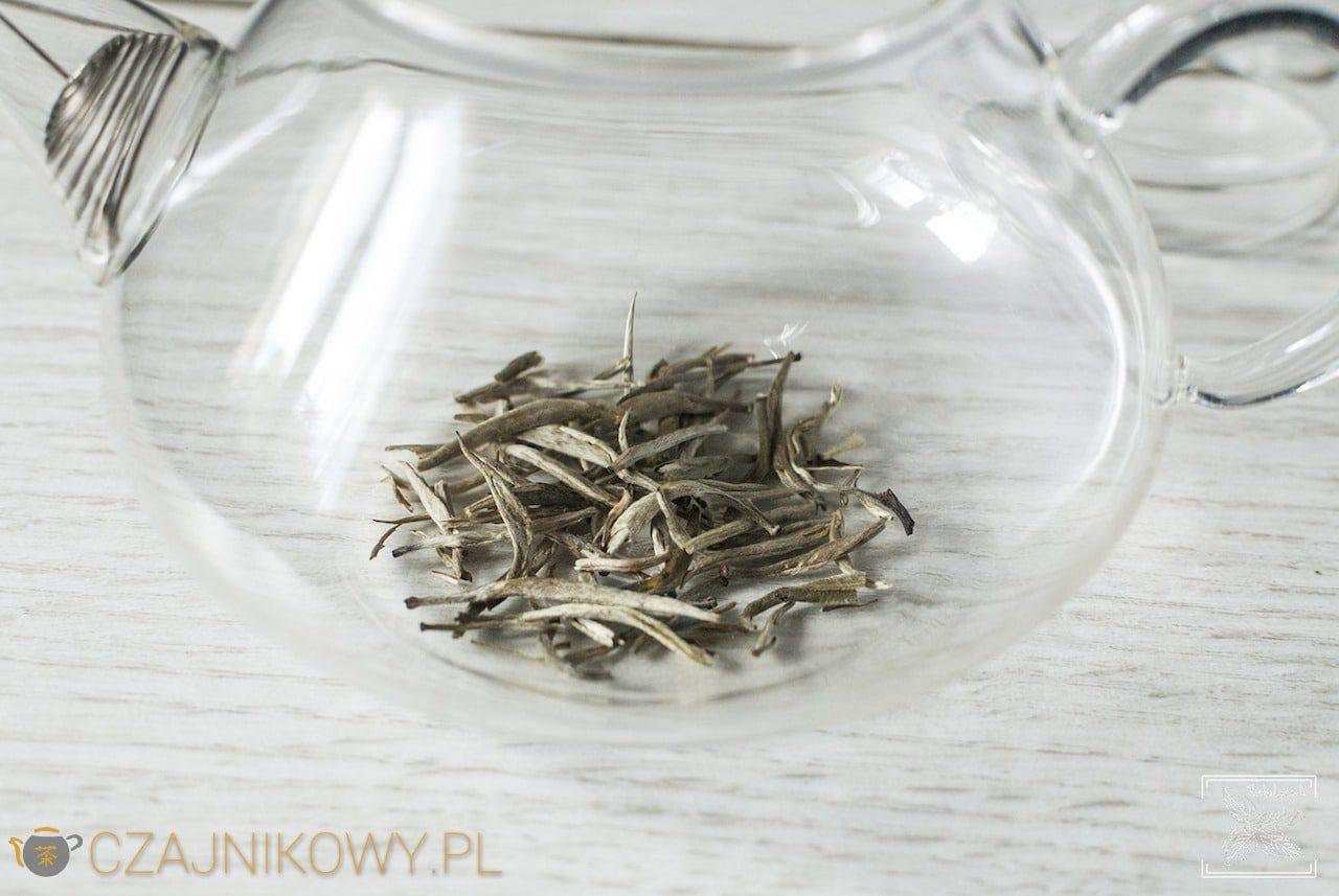 Herbata biała Yin Zhen parzona na zimno i klasycznie, parzenie