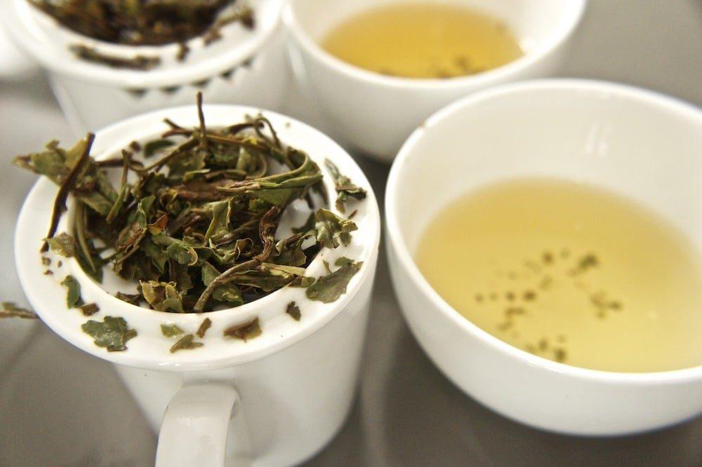 Wstęp do parzenia herbaty: cuptasting herbaty białej Pai Mu Tan