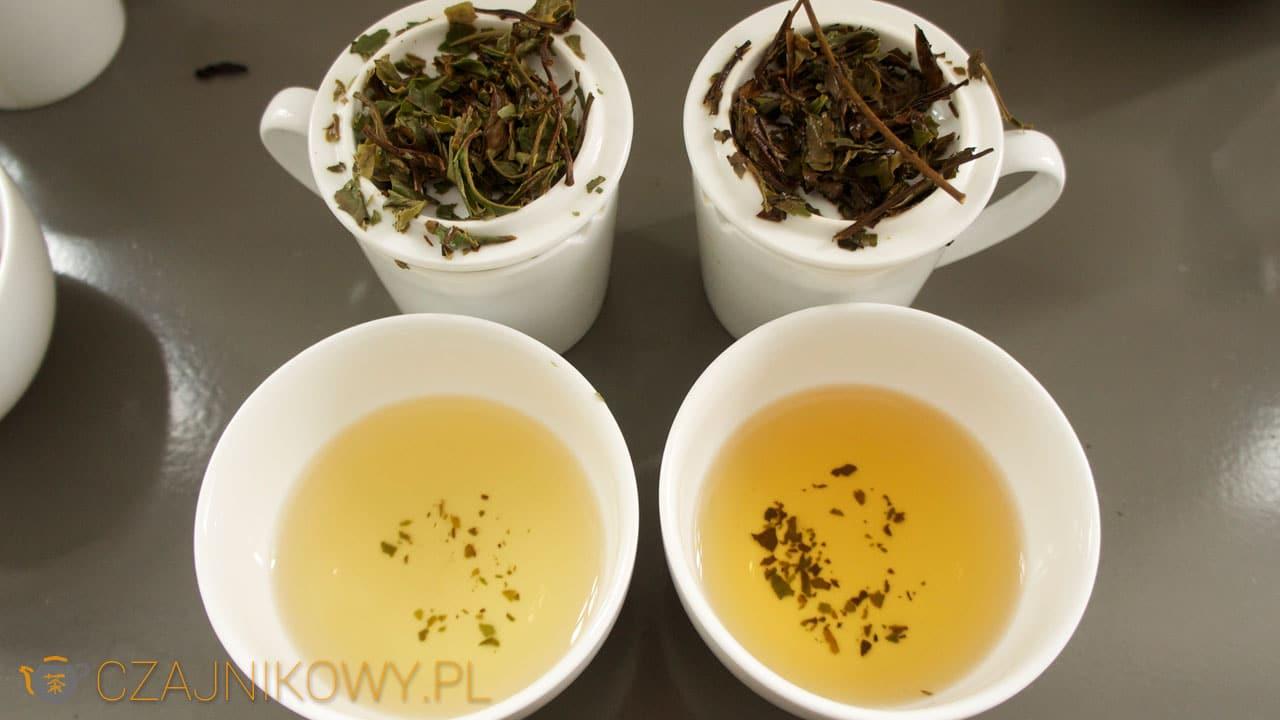 Herbata biała Pai Mu Tan, porównanie dwóch