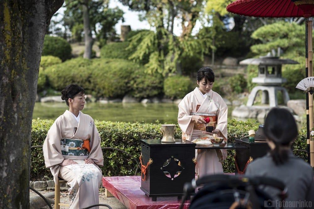 Ceremonia herbaciana, Osaka