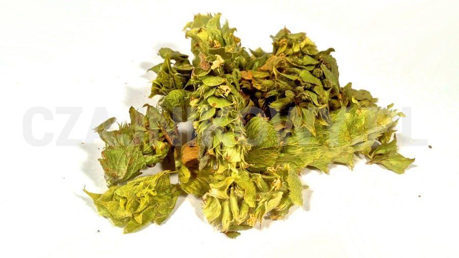 Herbata ziołowa Gojnik