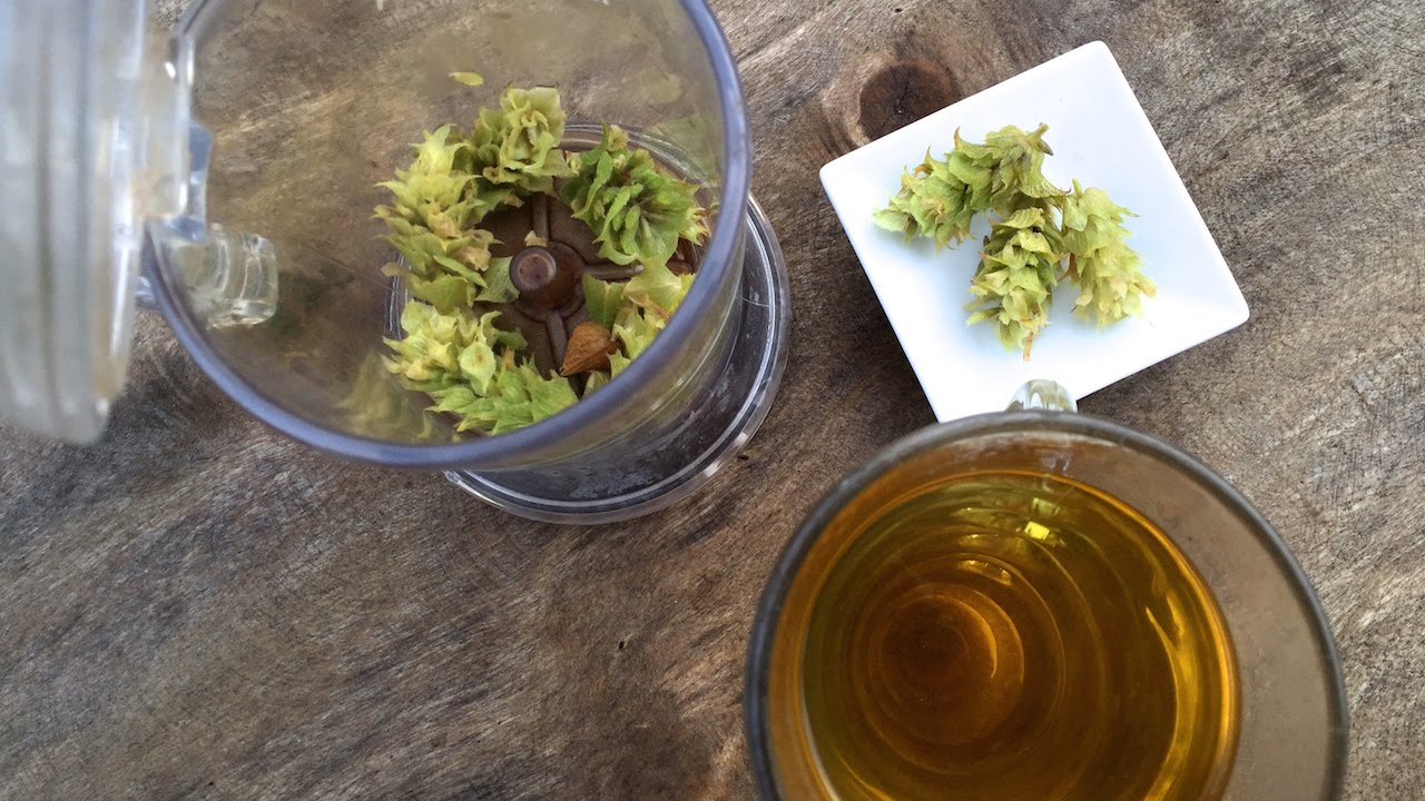 Gojnik na nerki. Herbata z Gojnika działa przeciwbólowo i wpływa na krążenie