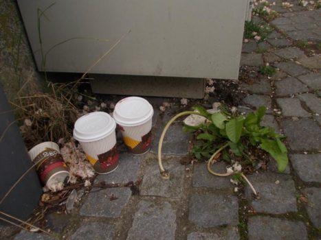 Śmieci, które pozostają po Coffee to go w Niemczech