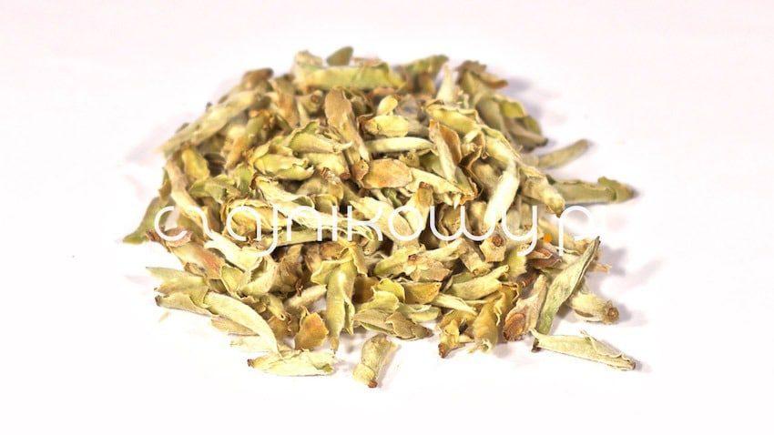 Herbata zielona Yunnan Wild Tea Buds Dziki