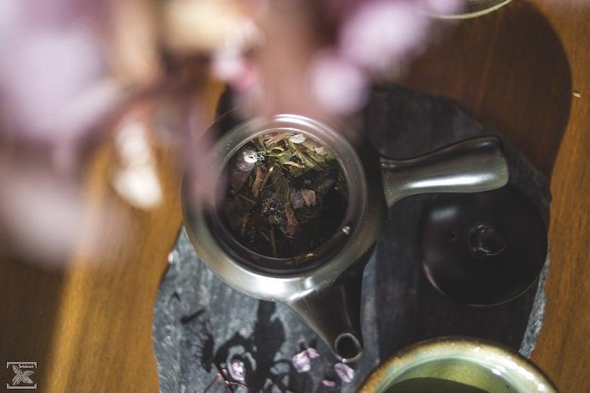 Parzenie zielonej herbaty Sakura