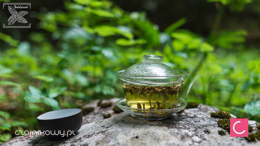 Odprężająca herbata jaśminowa z kwiatami. Jaśminowa herbata relaksuje