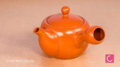 Japoński czajnik do herbaty Tokoname