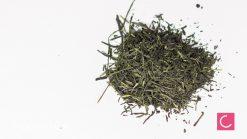 Herbata zielona Japan Gyokuro Miyazaki Organiczna Organic