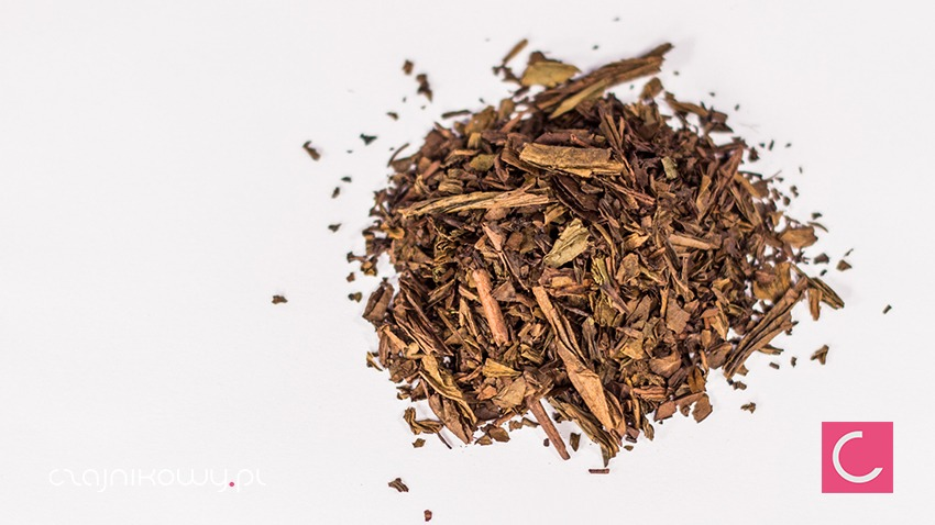 Herbata zielona Hojicha Uji Organiczna Organic