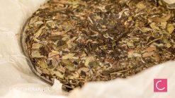 Herbata biała sprasowana Fuding Pai Mu Tan Beeng Cha 350g