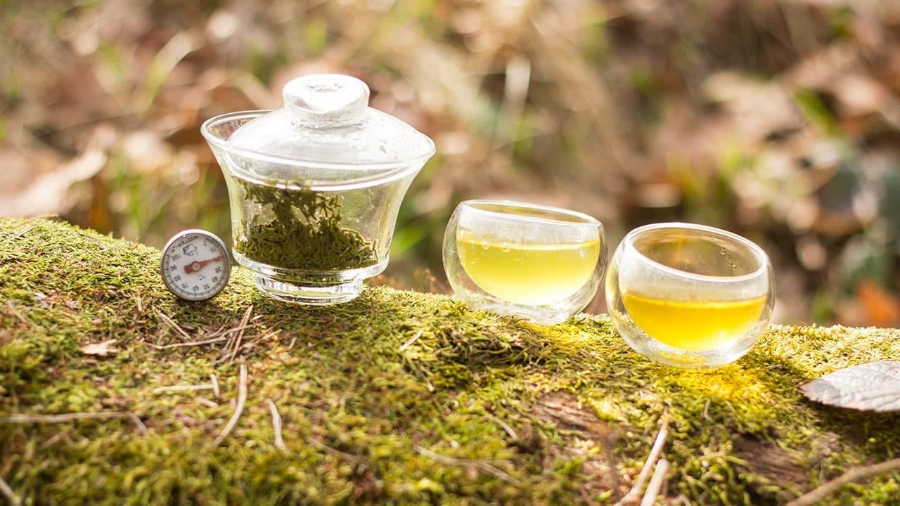 Herbata zielona japońska kokeicha parzenie pochodzenie