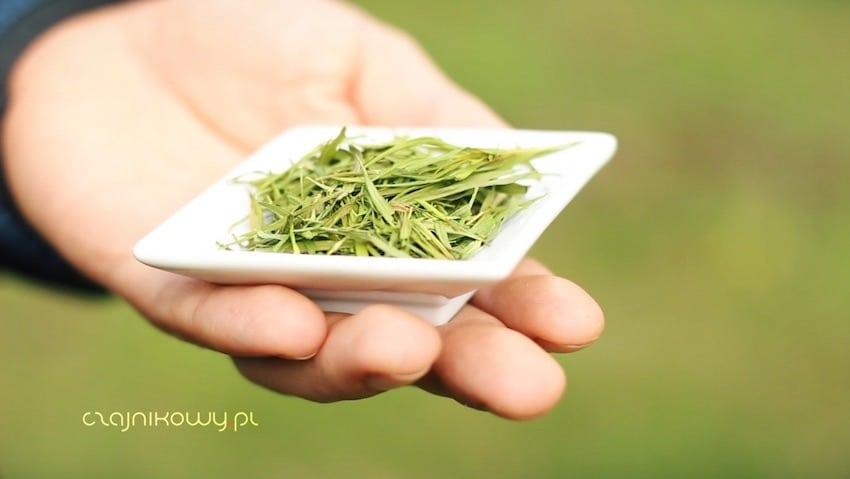 Herbata z bambusa właściwości, herbata bambusowa parzenie liści