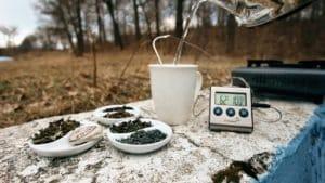 Jak dobrze zaparzyć herbatę? Porady jak parzyć herbatę