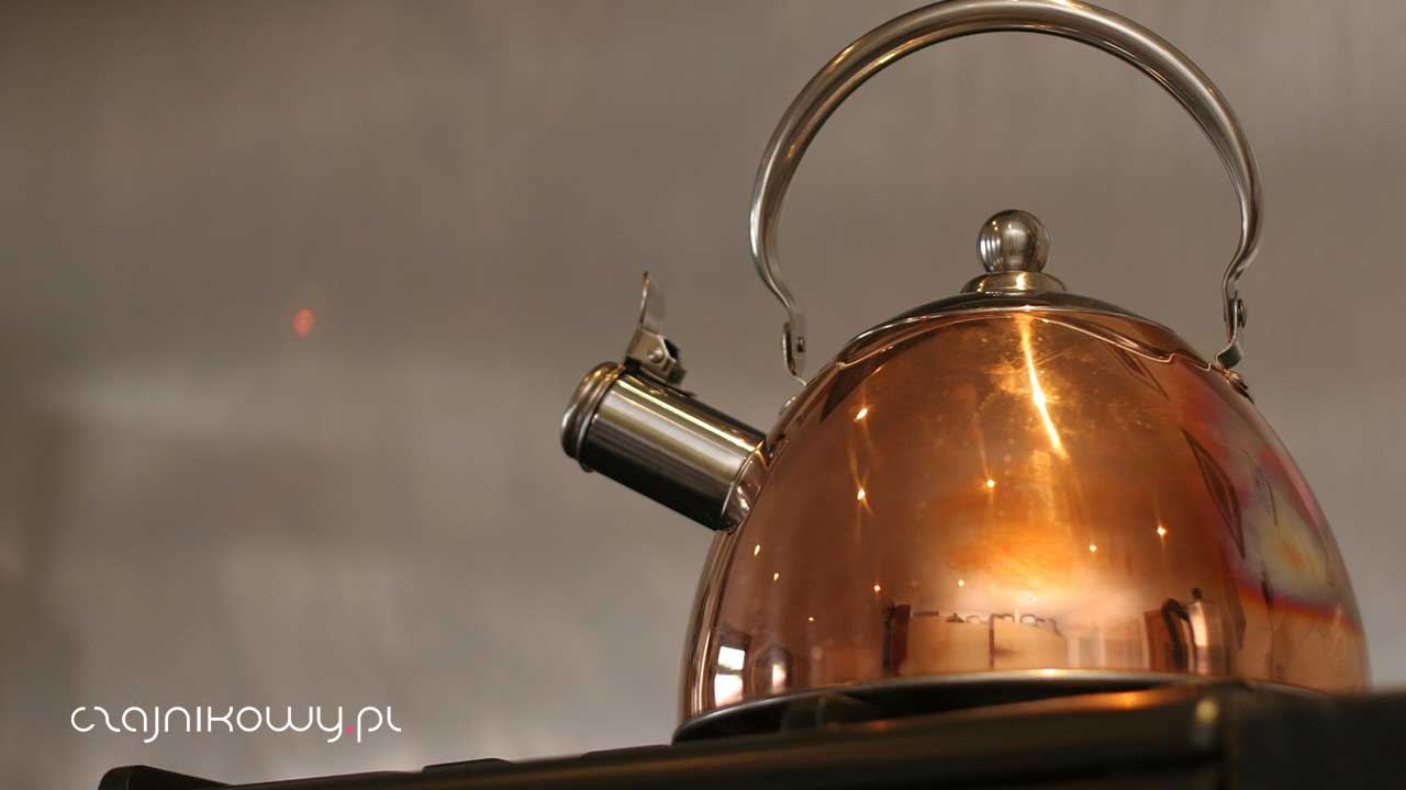 Jak prawidłowo gotować wodę do herbaty. Ile razy wolno gotować wodę?