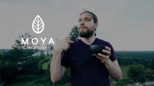 Test herbaty Matcha: zielona herbata Moya Matcha, opinie