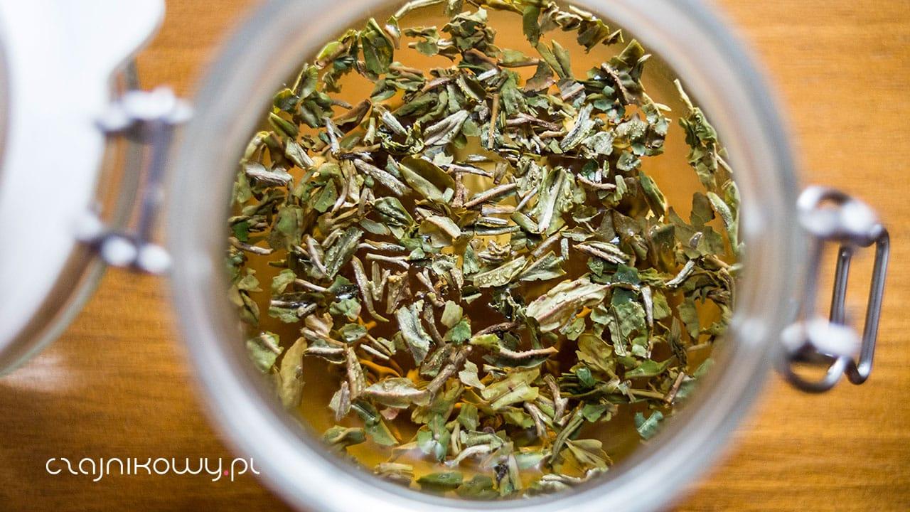 Herbata czarna Darjeeling z pierwszego zbioru - parzenie tradycyjne i cold brew