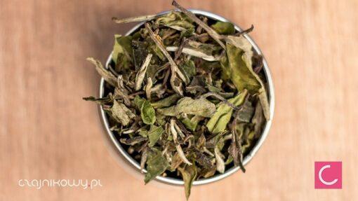 Herbata biała Pai mu tan Fuding Special Grade