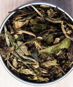 Herbata biała Pai mu tan Lapsang Fuding