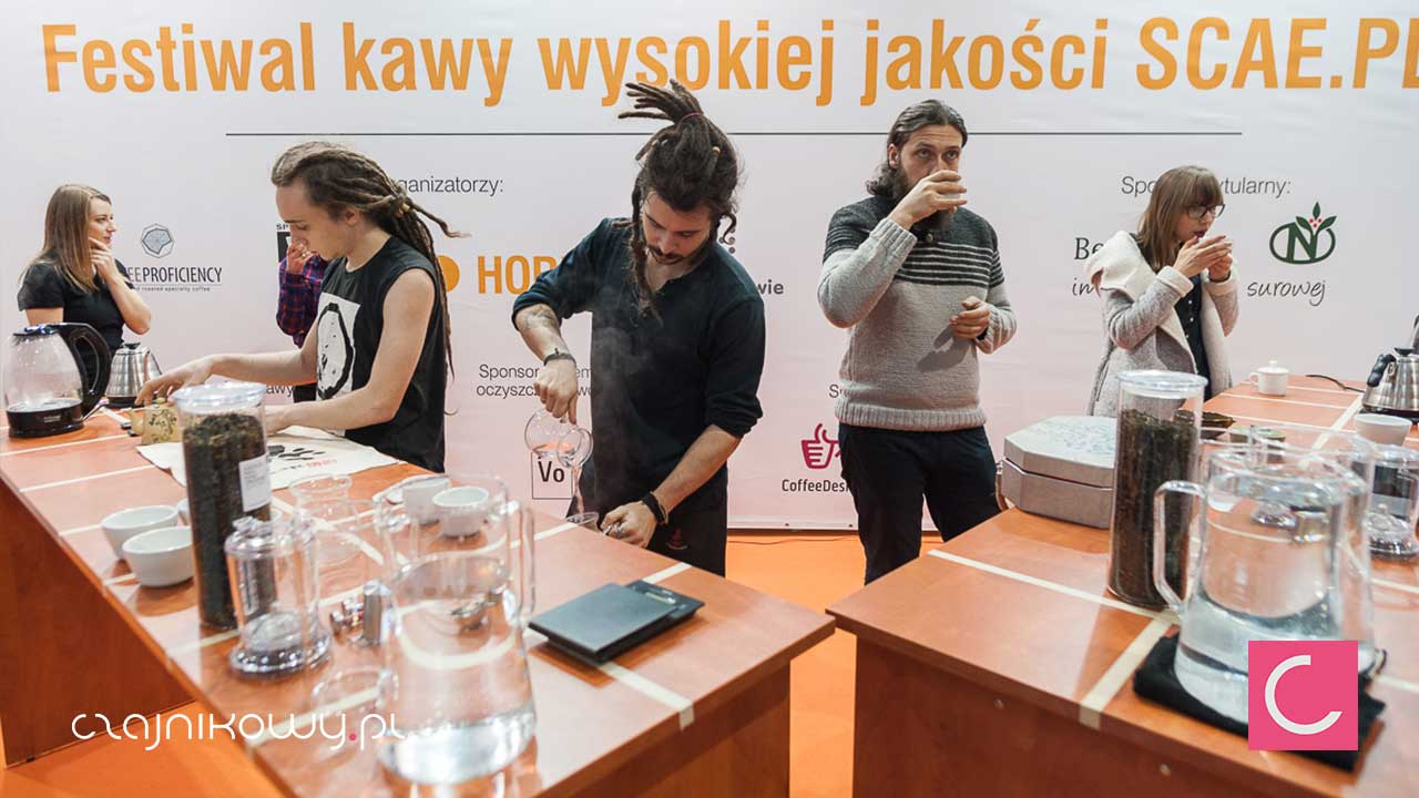 Tea Brewers Cup 2016 TBC2016 Kraków, Horeca. Wyniki