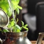 Herbata zielona z miętą. Herbata z Maroka – właściwości