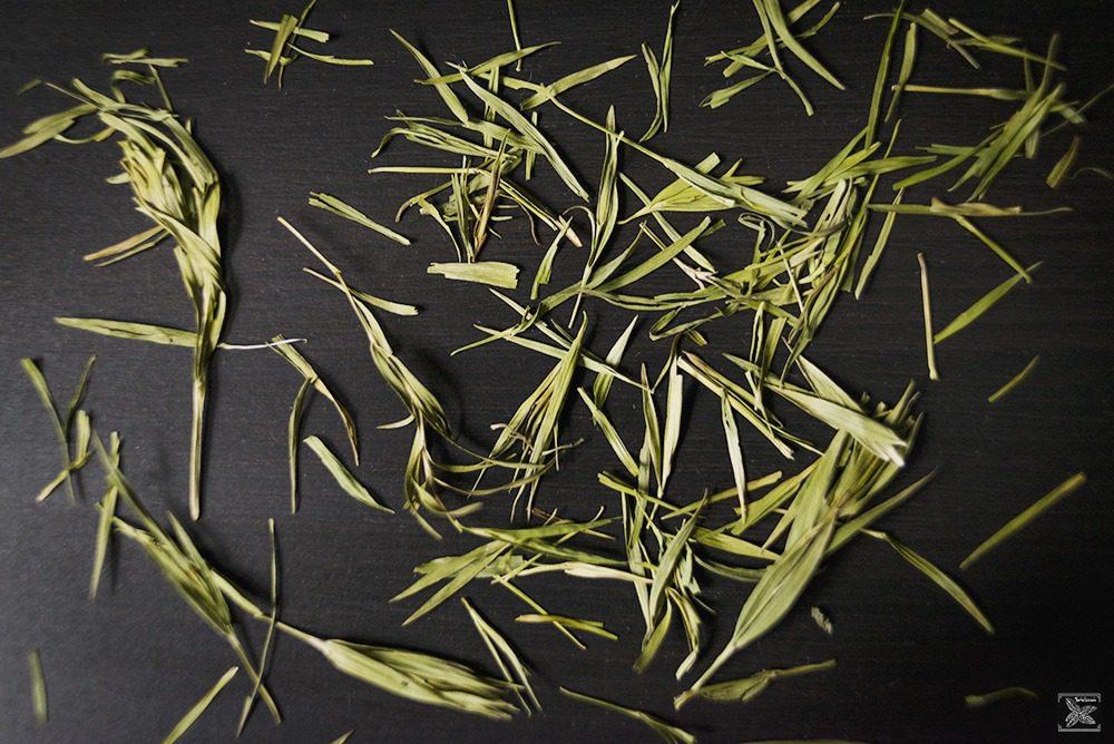 Listki bambusa