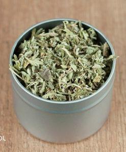 Herbata ziołowa Moringa drzewo życia