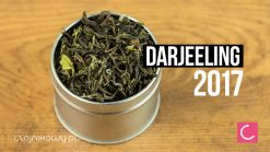 Herbata Darjeeling Puttabong 2017 First Flush