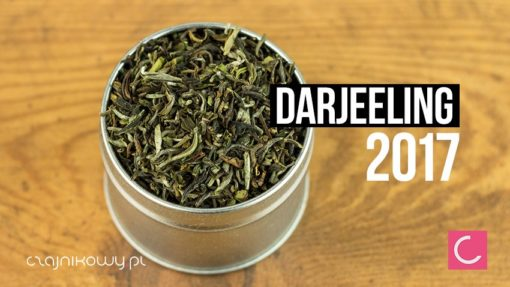 Herbata Darjeeling Singell 2017 First Flush