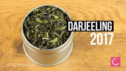 Herbata Darjeeling Steinthal 2017 First Flush