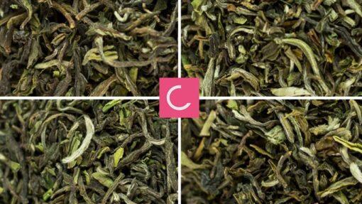 Zestaw świeża herbata 6x Darjeeling 2017
