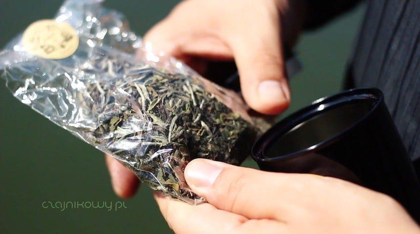 Herbata wyprodukowana w Szkocji: liście białej herbaty
