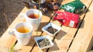 Portugalska herbata. Herbata z Azorów