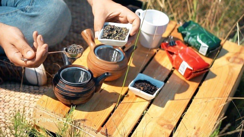 Portugalska herbata. Herbata z Azorów: parzenie herbaty