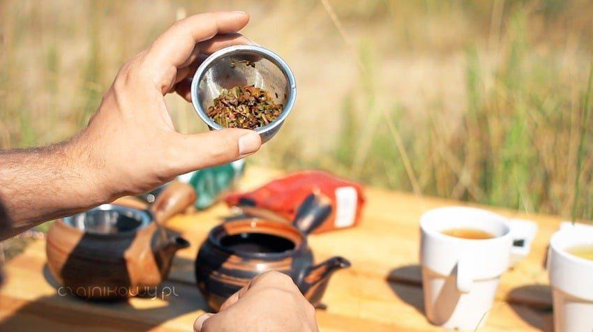 Portugalska herbata. Herbata z Azorów: liście po zaparzeniu