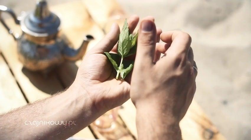 Herbata z Tunezji - przepis na miętową herbatę: rozgniatanie mięty